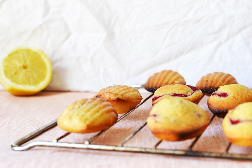 madeleines citron framboise 05